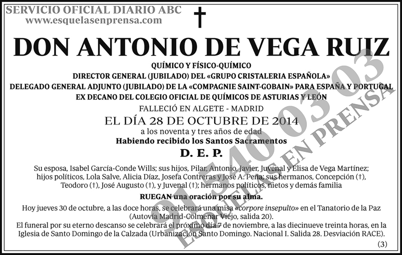 Antonio de Vega Ruiz